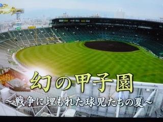 20150723幻の甲子園1